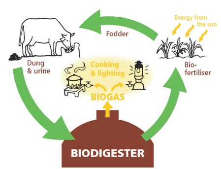 biogas_proces