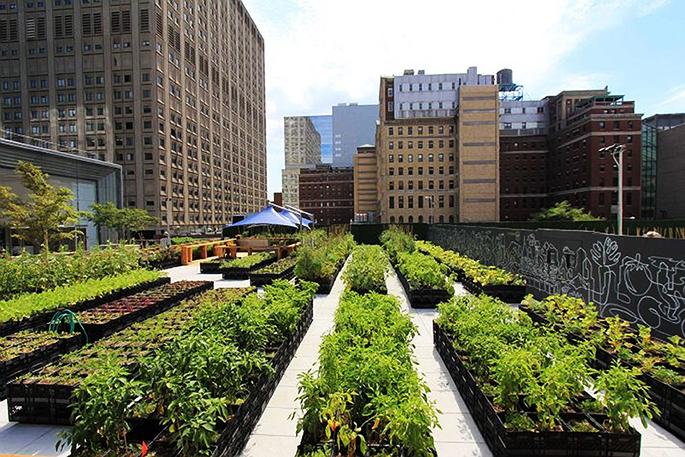 Arquitectura sostenibilidad huertos urbanos reducen for Jardin urbano gijon