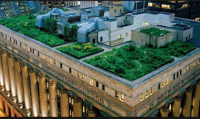 Techos verdes son obligatorios en copenhague suiza - Cubiertas vegetales para tejados ...