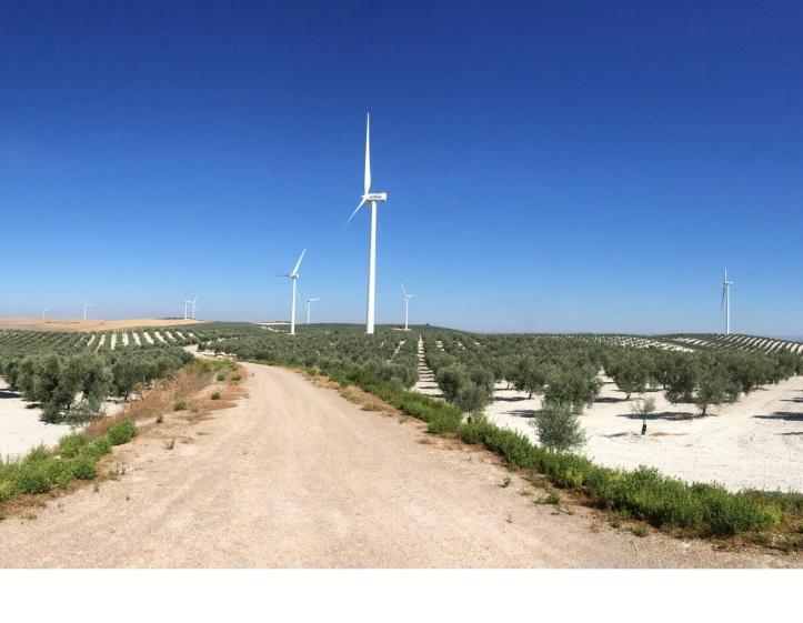 blue-tree-parque-eolico-en-andalucia