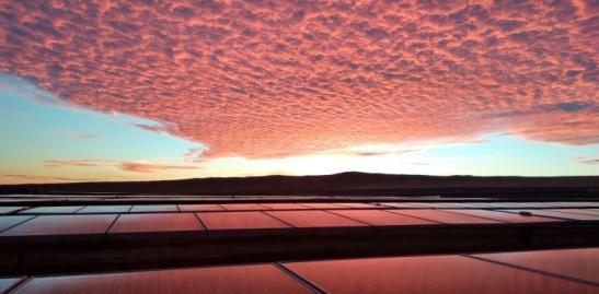 BOP-solar-2016-chile-conejo-01-770x380