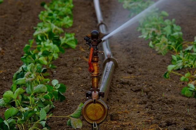 water-sprinklers-880970_640