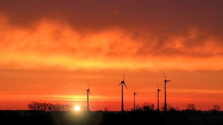 backlit dawn dusk electricity